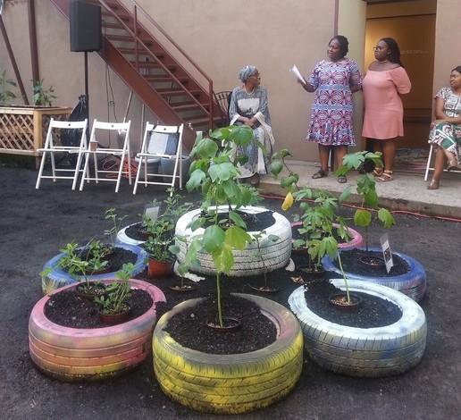 Pr sentation du jardin ethnique de la maison de l afrique for Angelina maison de l afrique